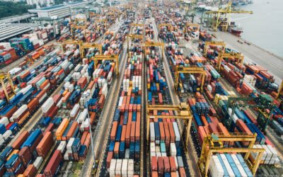 TRADE TIPS | Mercado de alimentación en el Reino Unido – Perspectiva del importador | JUNIO 2020